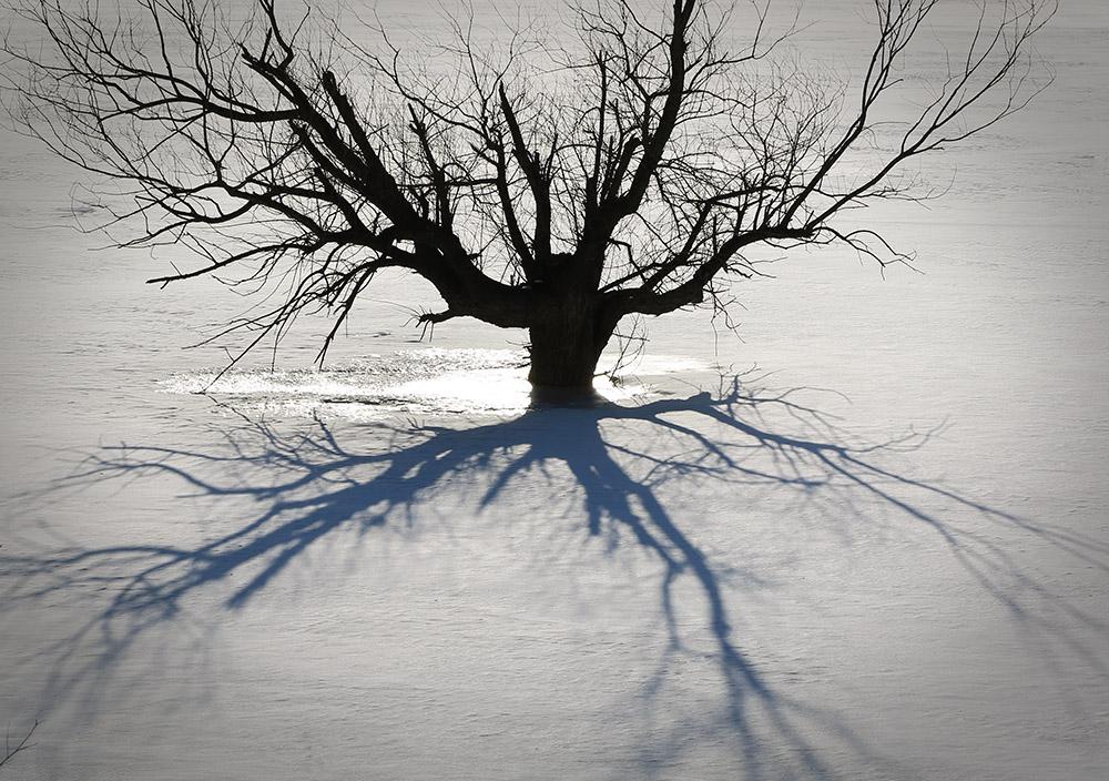 孤影   若冰冰   135.jpg